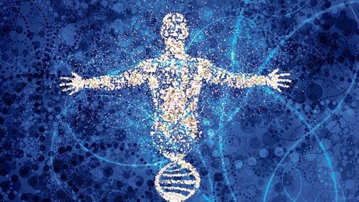 İnsan Genomunun Haritalanması