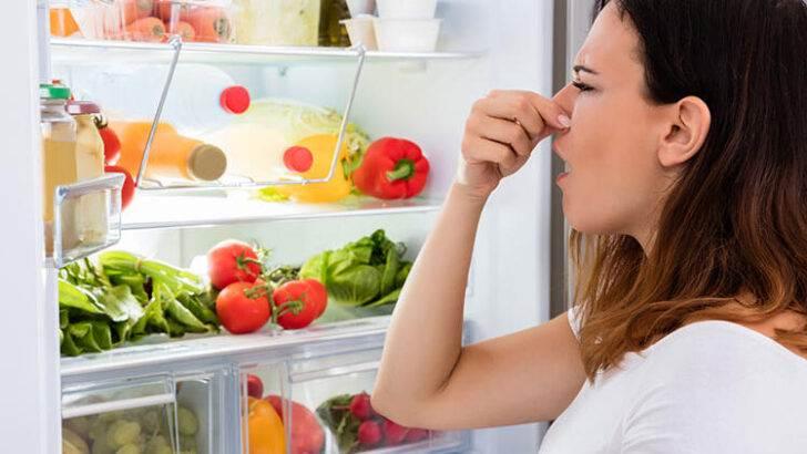 Buzdolabındaki Koku Nasıl Engellenir