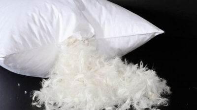 Kuş Tüyü Yastık Nasıl Temizlenir