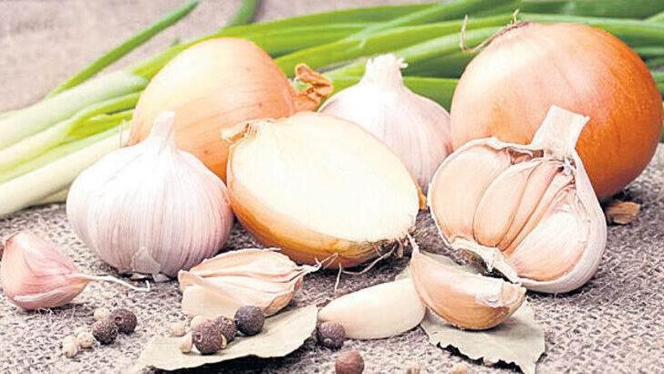 Sarımsak ve Soğan Kokusuna İyi Gelen Gıdalar