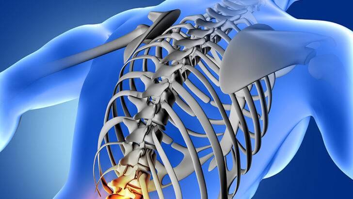 Omurga Yaralanmaları Hakkında Bilgi