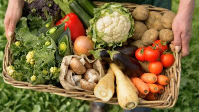 Organik Gıda Nedir, Nasıl Üretilir?
