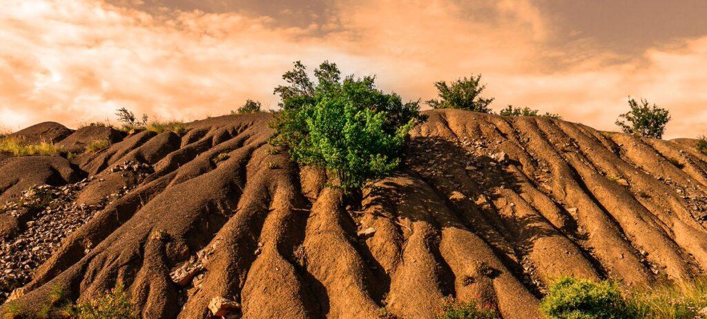 Toprağın Oluşumunu Etkileyen Faktörler