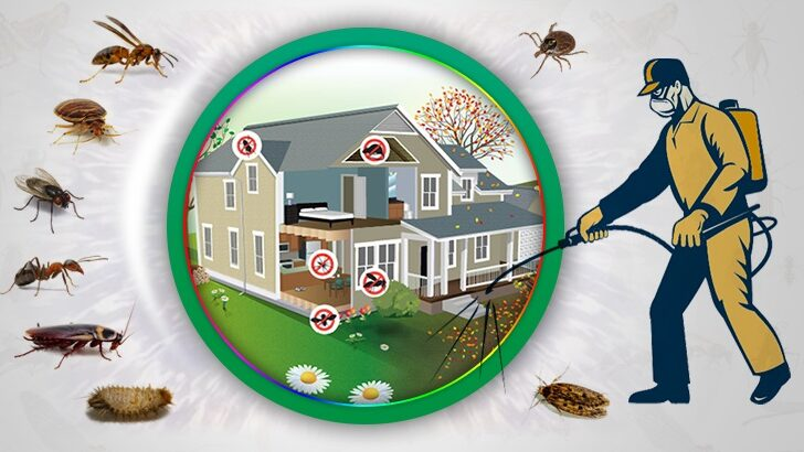 Böcek İlaçlama